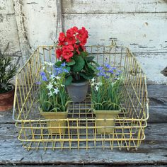 This is a nice vintage wire basket which has been painted yellow. It is in good vintage condition with some paint loss. There are 2 hooks on