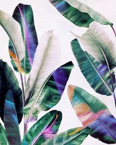 Crushing on this print we found on Society 6!  @society6 #tropical #print