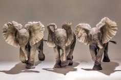 Elephant Sculpture - Nick Mackman