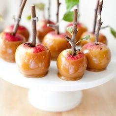 Caramel apples.