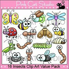 Insectos Clipart