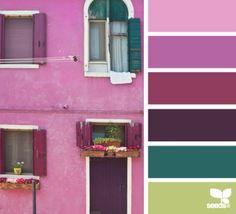 color seeds design - Google Search