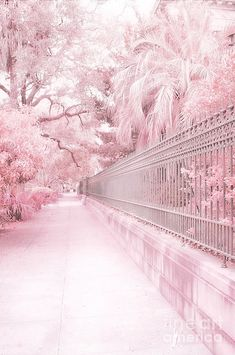 princesskealie: ☁ Iron Gate by Kathy Fornal Please do not remove caption or self-promote. Baby Pink Aesthetic, Aesthetic Colors, Flower Aesthetic, Aesthetic Pictures, Korean Aesthetic, Beautiful Nature Wallpaper, Beautiful Landscapes, Aesthetic Backgrounds, Aesthetic Wallpapers