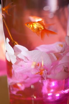 OMG someone put goldfish in their light up table centerpieces at a wedding reception. Cute & brilliant long as they go to a good home after! Our submersible LED lights are safe & perfect for such crafty water decorations: http://www.flashingblinkylights.com/ledsubmersiblecraftlights-c-114_462.html