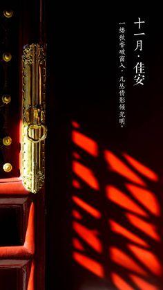 #紫禁城岁时#【十一月•佳安】 New Chinese, Chinese Tea, Chinese Culture, Chinese Style, Zaha Hadid Architecture, Chinese Architecture, Futuristic Architecture, Architecture Office, Modern House Facades