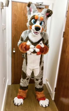 Think Furry Thoughts : Photo