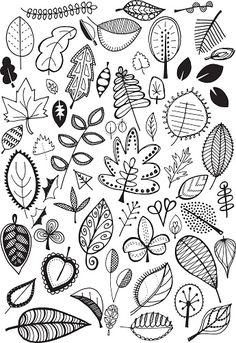 Doodle leaves vector art illustration