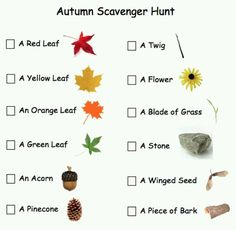 Fall fun. Scavenger hunt for kids - could be used at an afterschool program with outdoor access.