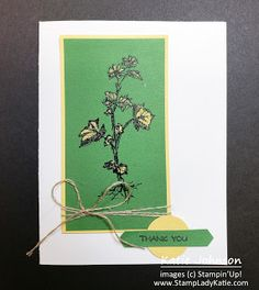 stamped, heat embossed in black and colored with bleach. Messy . . . use a Water Painter loke those sold by Stampin'Up!. Stampinup image from Field Journal - bleach on Garden Green cardstock Image C, Blog Images, Bleach, Stampin Up, Card Stock, Journal, Garden, Water, Projects
