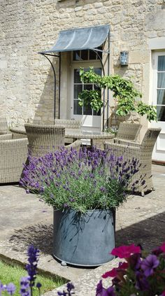 Large garden planters for patios - Circular metal planter pots from Garden Requisites.