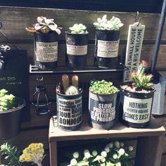 Aluminum Can Crafts, Tin Can Crafts, Aluminum Cans, Jar Crafts, Cactus E Suculentas, Tin Can Art, Deco Floral, Upcycled Crafts, Crafty Craft