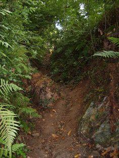 Notre chemin ...: Etape 11 : Espeyrac - Conques (12km)