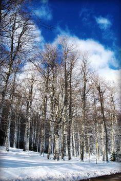 winter time in basilicata