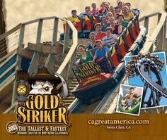 Gold Striker