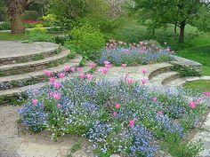 Great Dixter garden                                                                                                                                                                                 More