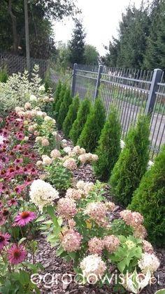 Miejski ogród w wersji mini - strona 47 - Forum ogrodnicze - Ogrodowisko Front Yard Garden Design, Front Garden Landscape, Garden Yard Ideas, Tropical Landscaping, Front Yard Landscaping, Beautiful Flowers Garden, Beautiful Gardens, Flower Garden Plans, Evergreen Garden