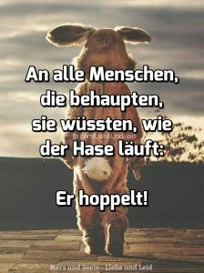 an.alle .menschen.die .behaupten Pretty Words, Cool Words, Hippie Words, Easter Bunny Pictures, Bright Side Of Life, Where Is My Mind, Cool Pets, Live Love, True Words