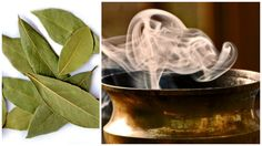 Burning These Leaves In The Center Of Your Home And Most of Your Problems Disappear in 10 Minutes! | Build Life Healthy