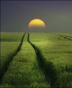 """❥‿↗⁀♥ simply-beautiful-world beautymothernature: """" Beautiful sunrise mother nature moments """" Beautiful Moon, Beautiful Sunrise, Beautiful World, Beautiful Places, Beautiful Farm, Simply Beautiful, Landscape Photography, Nature Photography, Photography Lighting"""