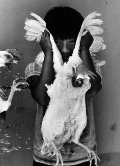 Graciela Iturbide, We all living beings are made of the same energy and…