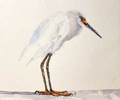 My original watercolor bird painting Little Snowy. I love to make bird art. I painted him from a photo I took in Florida. I love the soft white, sharp yellow and dark blacks in the Snowy Egrets. They are one of my favorite birds to paint right now! White background for this bird along with his shadow. This original watercolor painting measures approx. 12 inches wide and x 14 inches tall.  I can make prints of most of my original paintings, please inquire.   Please look around in my shop…