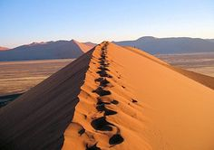 Le désert namibien s'étend, entre dunes de sable et surfaces planes, sur des milliers de kilomètres.