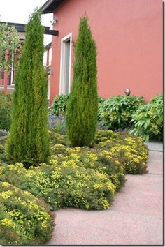 tuscan garden