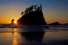 Olympic National Park, Jefferson, Clallam, Mason, and Grays Harbor Counties, Washington, USA.