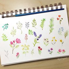 Spent some time painting different flowers and leaves. I felt like I was…