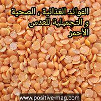 مجلة الإيجابية صحة تغذية تجميل تحفيز العدس الأحمر الفوائد الغذائية الصحية و التجميل Red Lentil Lentils Food