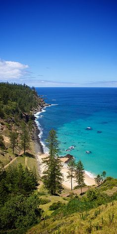 Norfolk Island, Australia - I never knew you could find pine trees next to the beach in Australia! Places Around The World, Oh The Places You'll Go, Places To Travel, Places To Visit, Around The Worlds, What A Wonderful World, Beautiful World, Beautiful Places, Lombok