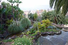 Im Park Taoro mit Blick auf die Stadt und das Meer. #Teneriffa