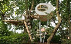 In deze boomhut relax en geniet je van een uitzicht over het bos - Roomed