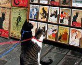 Cat Print- Chat Noir  $20