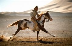 Viggo Mortensen bought TJ (the horse who played Hidalgo in the movie) after filming was done. I have and always will love Hidalgo. All The Pretty Horses, Beautiful Horses, Animals Beautiful, Zebras, Horse Movies, Bon Film, Mustang, The Lone Ranger, Horses And Dogs