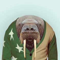 """Zoo Portraits"" - Yago Partal"