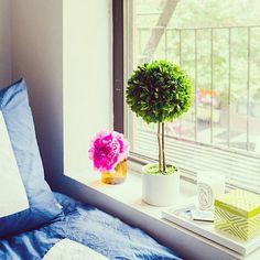 Design Darling home decor & monogrammed gifts — Ginger Jar Matches