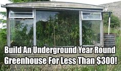 Build An Underground Year Round Greenhouse For Less Than $300. Secure your food by building this amazing cheap greenhouse today. Works well in winter too.
