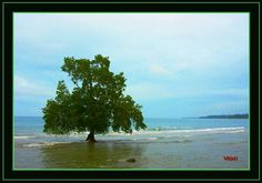 Carmen, Agusan del Norte, Philippines.