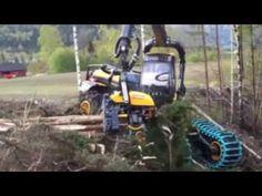 Khai thác gỗ cực chất ở nước ngoài | Máy khai thác gỗ nhanh nhất