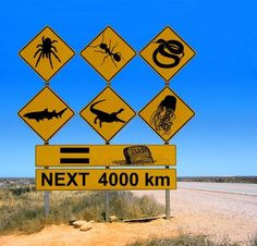 World Cup Fun Fact: AUSTRALIA How does a road trip in Australia sound to you? Think outback, aborigines, diving, wildlife and so much more! Interesting road signs only in Australia! Drivers, beware kangaroos that might hop across the roads! Australia Funny, Australia Day, Australia Travel, Western Australia, Queensland Australia, Visit Australia, Australia Winter, Cairns, Tasmania