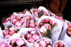 Pink bouquet of peonies at the flower market. My Flower, Fresh Flowers, Pink Flowers, Beautiful Flowers, Pink Roses, Beautiful Things, Flower Bomb, Cactus Flower, Tea Roses