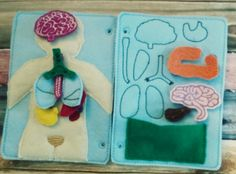 Anatomy quiet book page - felt anatomy pieces - body part quiet book page
