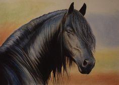 horse by PASTELIZATOR on deviantART