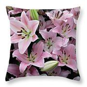 Pale Pink Star Lilies Throw Pillow by Joan-Violet Stretch