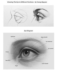 Ideas For Eye Drawing Tutorial Side Graphite Drawings, Pencil Art Drawings, Drawing Sketches, Pencil Sketching, Eye Drawings, Sketch Painting, Eye Anatomy, Anatomy Drawing, Realistic Eye Drawing