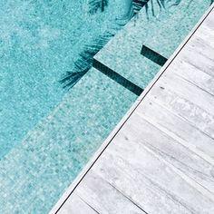 Let's swim // @harperandharley