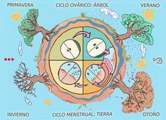 ciclo ovarico naturaleza horizontal