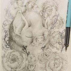 "sarahlumenheine: ""The first drawing with my new mechanical pencils. I love their weight and feel. Sleeping animals seem to be one of my current favourite things to draw. """