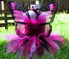 Butterfly Tutu Costume 12 months (custom orders available) Crazy Costumes, Tutu Costumes, Animal Costumes, Costume Ideas, Toddler Butterfly Costume, Monarch Butterfly Costume, Toddler Halloween, Halloween Decorations, Halloween Party